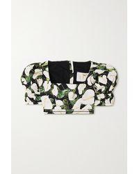 Agua by Agua Bendita Bambu Cropped Floral-print Cotton-poplin Top - Black
