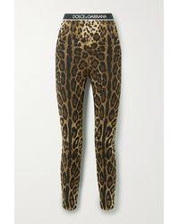 Dolce & Gabbana Diva Leggings Aus Crêpe Aus Stretch-seide Mit Leopardenprint - Braun