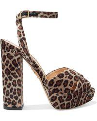 Charlotte Olympia - Velvet Leopard-print Platform Sandals - Lyst