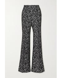 Michael Kors Brooke Lace And Crepe Flared Pants - Black