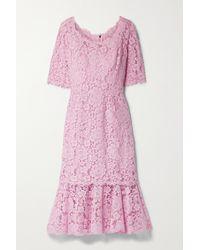 Dolce & Gabbana Midikleid Aus Schnurgebundener Spitze - Pink