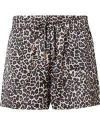 Anine Bing Ashley Leopard-print Silk-charmeuse Pyjama Shorts - Multicolour