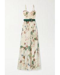 PATBO Sophia Belted Lace-paneled Floral-print Chiffon Maxi Dress - Multicolour