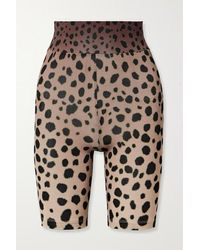 House of Holland Cheetah-print Stretch-jersey Shorts - Brown