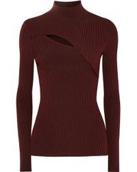 Mugler - Cutout Ribbed Stretch-knit Turtleneck Jumper - Lyst