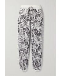 TWENTY MONTREAL Pineapple Hyper Reality Jacquard-knit Cotton-blend Track Pants - Multicolour