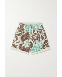 Racil Floral-print Cotton-terry Shorts - Green