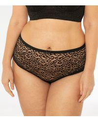 New Look Curves Black Leopard Lace Briefs