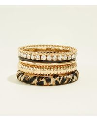 New Look - Gold Leopard And Diamanté Bangle Pack - Lyst