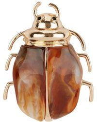 New Look Brown Bug Brooch