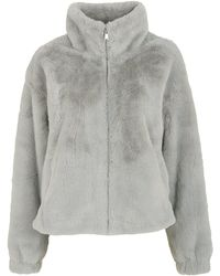 New Look Pale Grey Faux Fur High Neck Jacket