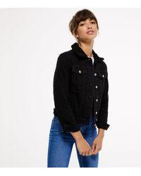 New Look Black Teddy Lined Collar Denim Jacket