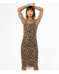 New Look Brown Leopard Print Mesh Bodycon Midi Dress
