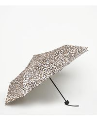 New Look Stone Leopard Print Collapsible Umbrella - Multicolour