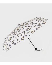 New Look Multicoloured Leopard Print Umbrella