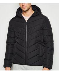 New Look Black Long Sleeve Puffer Jacket