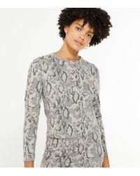 New Look - Light Grey Fine Knit Snake Print Top - Lyst
