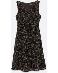 Mela Black Spot Cowl Neck Dress
