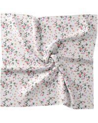 Nicole Miller Ivory Floral Silk Blend Scarf - White