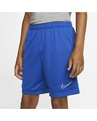 Nike Dri-FIT Academy Fußballshorts - Blau