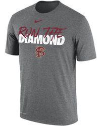 Nike College Dri-fit (florida State) T-shirt - Gray