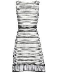 Taylor Dresses | Stripe Fit & Flare Dress | Lyst