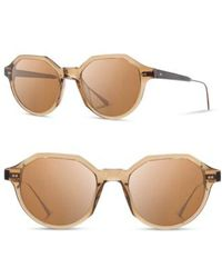 a25b0f41b4 Mckenzie Acetate Wood - Polarized (black Olive elm Burl grey Polarized)  Polarized Sport Sunglasses.  199. Zappos · Shwood - Powell 50mm Sunglasses  - Copper  ...