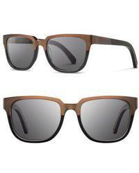 44072ca0c8 Shwood -  prescott  52mm Titanium   Wood Sunglasses - Bronze Titanium  Black