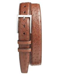 Torino Leather Company - Ostrich Leather Belt - Lyst