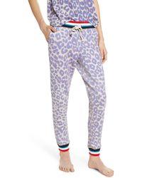 Sol Angeles Leopard Jogger Pants - Multicolor