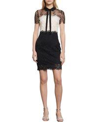 Sandro Tie Neck Lace Sheath Dress - Black