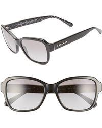 efd9865b24f3 COACH Lindsay Sunglasses in Black - Lyst