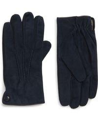 Eleventy Suede Gloves - Blue