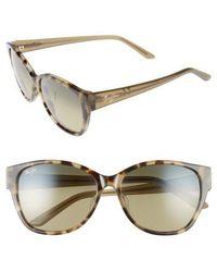 Maui Jim - Summer Time 54mm Polarizedplus2 Cat Eye Sunglasses - Olive Tokyo Tortoise - Lyst