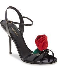 Dolce & Gabbana Rose Embellished Sandal - Black