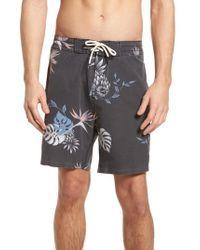 Globe - Shangri-la 3.0 Board Shorts - Lyst