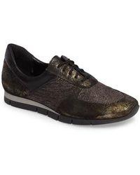 Sesto Meucci - Corin Sneaker - Lyst