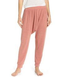 Honeydew Intimates - Jersey Harem Pants - Lyst