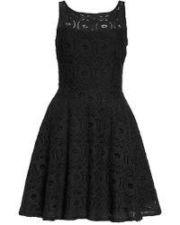 BB Dakota - 'renley' Lace Fit & Flare Dress - Lyst