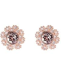 Ted Baker - Crystal Daisy Lace Stud Earrings - Lyst