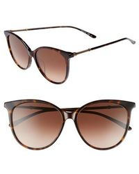 Bottega Veneta - 57mm Cat Eye Sunglasses - Avana - Lyst