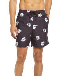 PacSun Eco Daisy Floral Swim Shorts - Black