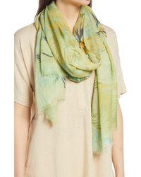 Nordstrom Gauzy Silk Scarf - Green