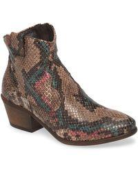 Cordani Prospera Snake Embossed Boot - Brown