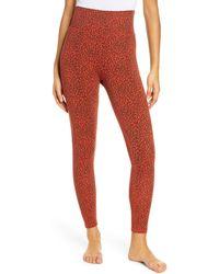 Ragdoll Leopard Print High Waist Leggings - Red