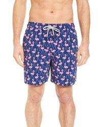 Tom & Teddy - Flamingo Print Swim Trunks - Lyst