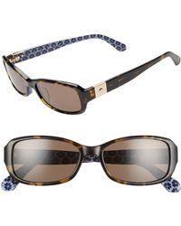 Kate Spade Paxton2 53mm Polarized Sunglasses - Havana/ Blue