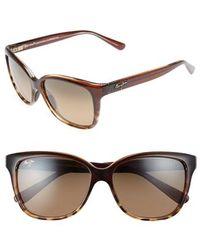 Maui Jim Starfish 56mm Polarizedplus2 Cat Eye Sunglasses - Clear Chocolate/ Tortoise - Brown
