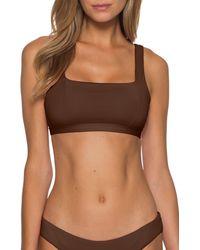 Becca Color Code Bikini Top - Brown