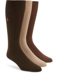 Polo Ralph Lauren - Ralph Lauren 3-pack Supersoft Ribbed Socks, Brown - Lyst